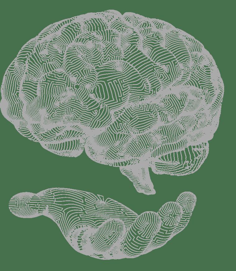 por que aprender neuromarketing